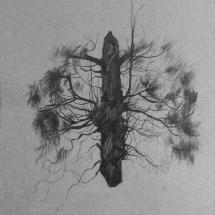 strommotyl
